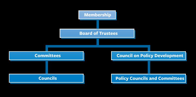 Member Involvement Flowchart