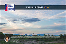 THIE 2016 Annual Report